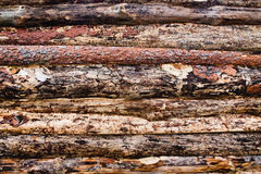 Background pine planks Royalty Free Stock Photo