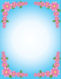 Background. The pink flower on blue background Royalty Free Stock Photo