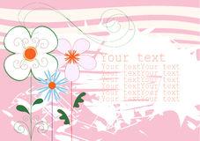 Background pink with flowers Stock Image