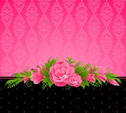 Background with pink flowers. Stock Photos
