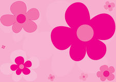 Background of pink flowers Royalty Free Stock Photos
