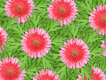 Background of pink flowers and green leaf Stock Photography