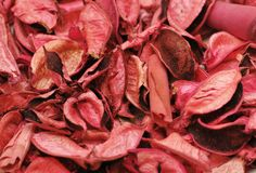 Background with pink leaves Royalty Free Stock Photo