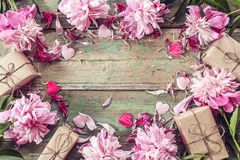 Background with pink peonies and gift box on old green boards. Stock Photos
