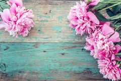 Background with pink peonies on the old boards with shabby blue. Paint. Place for text. Top view Royalty Free Stock Images