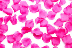 Background of pink petals Royalty Free Stock Images