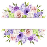 Background with pink, purple and white roses and lilac flowers. Vector eps-10. Royalty Free Stock Photography