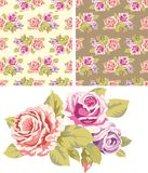 Background with pink roses Stock Image