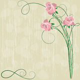 Background with pink roses Royalty Free Stock Photography