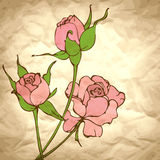 Background with pink roses on craft paper Royalty Free Stock Photography