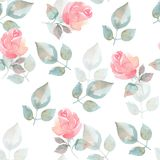Background with pink roses. Seamless pattern. Hand drawn watercolor seamless floral pattern Stock Image
