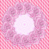 Background with Pink Roses Royalty Free Stock Image