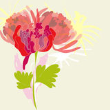 Background with pion flower. Colorful illustration Royalty Free Stock Photography