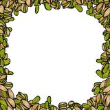Background with pistachio. Vector hand drawn illustration Royalty Free Stock Image