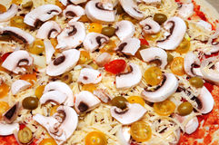 Background of pizza ingredients Stock Image
