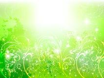 Background plant fern sky. Background illustration of beautiful landscape Royalty Free Stock Images