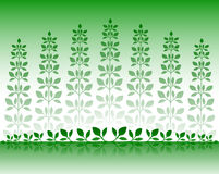 Background plants Royalty Free Stock Photography