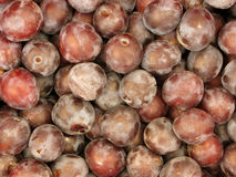 Background of plums Stock Image