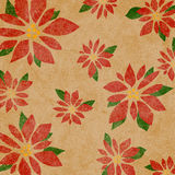 Background Poinsettia Royalty Free Stock Photos