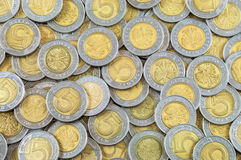 Background of polish coins Stock Photo