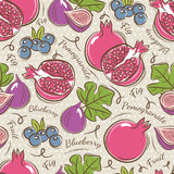 Background with  pomegranate, fig and blueberry Stock Image