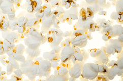 Background with  pop corn  seeds seamless as an unusual food composition Royalty Free Stock Image