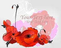 Background with poppies Stock Image