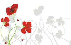 Background with poppies. Vector drawing of background with meadow poppies Stock Photos