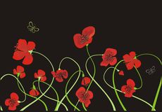 Background with poppies. Vector drawing of the meadow with poppy flowers Royalty Free Stock Photography