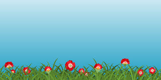 Background With Poppies Stock Photos