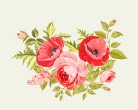 Background with poppies. Stock Image