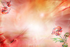 Background with poppy Stock Images