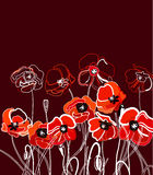 Background with poppy Royalty Free Stock Photography