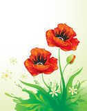 Background with poppy Royalty Free Stock Images
