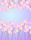 Background with primroses Royalty Free Stock Photography