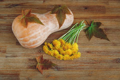 Background from Pumkin,Green Leaves,Bunch of Dandelions on the Wooden Table.Autumn Garden's Vegetables.Top View Royalty Free Stock Image