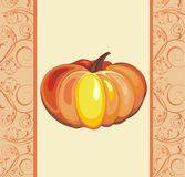 Background with Pumpkin Stock Photography
