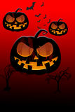 Background of pumpkins for halloween Stock Photography