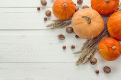 Background with pumpkins, nuts and ears of wheat on a white wood Stock Image