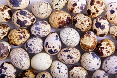 Background with quail eggs Stock Photo