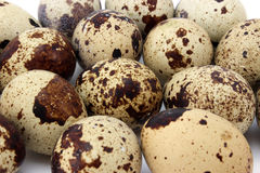 Background quail eggs Royalty Free Stock Photography