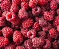 Background of raspberries. Fresh raspberries closeup. Top view. Background of red berries. Various fresh summer fruits. Red raspberries Royalty Free Stock Image