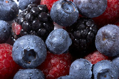 Background from Raspberry and blueberry. Background from fresh juicy Raspberry and blueberry Stock Photos