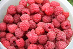 Background of raspberry Stock Photos