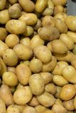 Background of Raw Potato for French fries. Raw potato cooking ingredient. Vegetable for garnet. French fries or mashed potato background Royalty Free Stock Photo