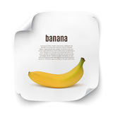 Background with realistic banana Royalty Free Stock Photo