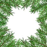 Background with realistic green fir tree branch. Place for text, congratulation. Christmas, New Year symbol. Art vector illustration Stock Images