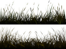 Background of realistic meadow grass/ Stock Photo