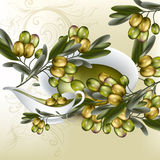 Background with realistic vector olives and olive oil  on white. Vector background with olives branches and olive oil for design Royalty Free Stock Image