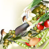 Background with realistic vector vegetables, onion, mushrooms, o Royalty Free Stock Photo
